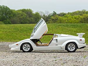 Bilder Lamborghini Antik Weiß Seitlich 1988-90 Countach -25 Anniversario Bertone Autos