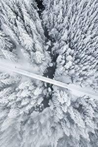Hintergrundbilder Winter Wege Von oben Bäume Schnee Natur