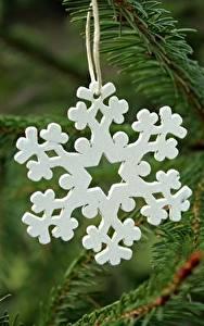 Hintergrundbilder Hautnah Neujahr Unscharfer Hintergrund Ast Schneeflocken Aus Holz