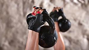 Bilder Großansicht Hanteln Hand Handschuh Sport