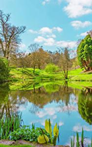 Fotos Vereinigtes Königreich Frühling See Landschaftsfotografie Bäume Wales Powys County Natur