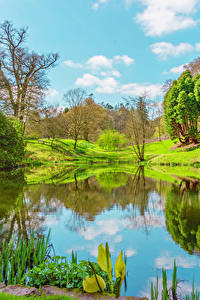 Fotos Vereinigtes Königreich Frühling See Landschaftsfotografie Bäume Powys County Wales Natur