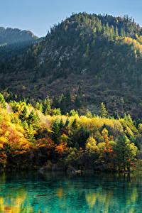 Sfondi desktop Valle del Jiuzhaigou Cina Parchi Montagna Autunno Lago Paesaggio Alberi Natura