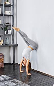 Bilder Fitness Braune Haare Trainieren Bein Mädchens Sport