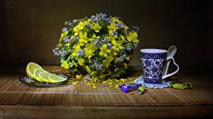 Hintergrundbilder Sträuße Nieswurz Bonbon Zitronen Stillleben Tasse Blüte