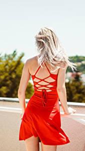 Fotos Blondine Kleid Hinten Rot