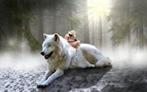 Fotos Wolf Wälder Sitzt Der Hut Lichtstrahl Fantasy