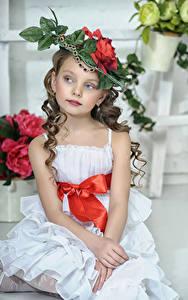Hintergrundbilder Kleine Mädchen Model Sitzt Der Hut Kleid Kinder