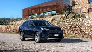 Fotos Toyota Hybrid Autos Blau Metallisch 2019 RAV4 Hybrid Worldwide