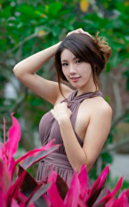 Bilder Asiatisches Pose Kleid Hand Blick Bokeh Mädchens