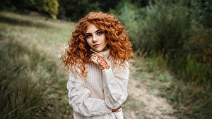 Pictures Curly Sweater Hands Staring Glance Hairstyle Hair Igor Kondukov, Alina Girls