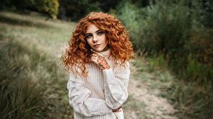 Bilder Lockige Sweatshirt Hand Starren Blick Frisur Haar Igor Kondukov, Alina Mädchens