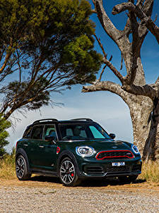 Fotos Mini Grün 2017-20 John Cooper Works Countryman Autos