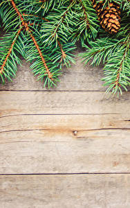 Photo Christmas Boards Branches Pine cone