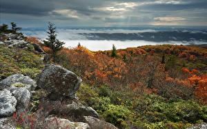 Fotos Vereinigte Staaten Steine Herbst Landschaftsfotografie Hügel Strauch West Virginia