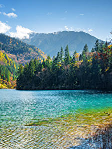 Fotos Jiuzhaigou park China Park See Gebirge Wälder Landschaftsfotografie