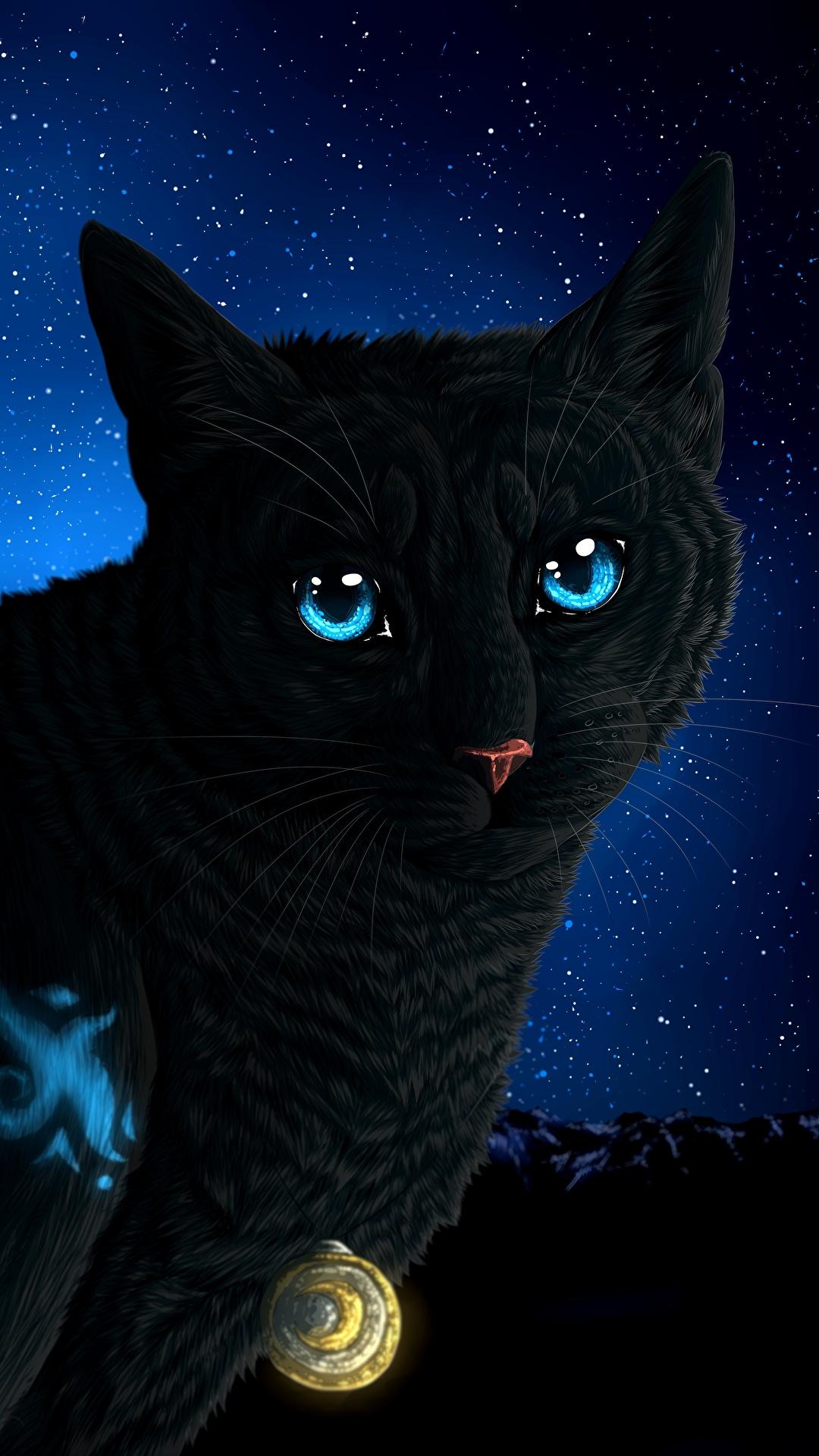 壁紙 1080x1920 飼い猫 描かれた壁紙 夜 凝視 動物