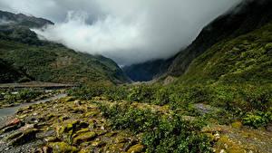 Fotos Neuseeland Gebirge Nebel Laubmoose Franz Josef Glacier Valley Natur