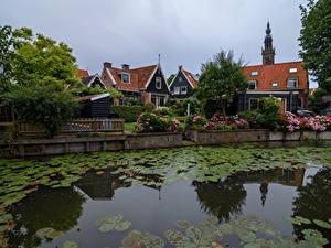 Bilder Niederlande Haus Seerosen Kanal Zaun Strauch Edam Städte