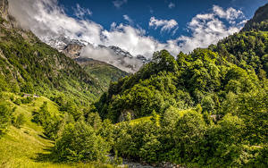Picture Switzerland Mountains Forests Landscape photography