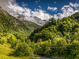 Picture Switzerland Mountains Forests Landscape photography Nature