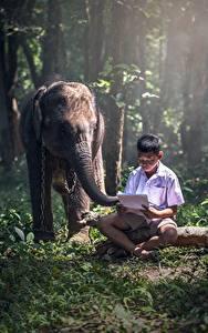 Fotos Asiatische Elefanten Jungen Sitzen Gras kind