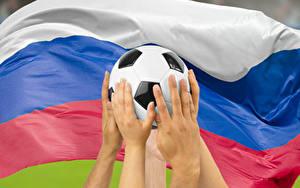 壁纸、、サッカー、ロシア、スポーツボール、手、旗、ロシアの、スポーツ