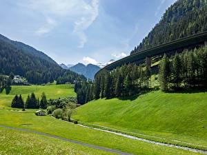 Fotos Gebirge Wald Grünland Österreich Tyrol Natur