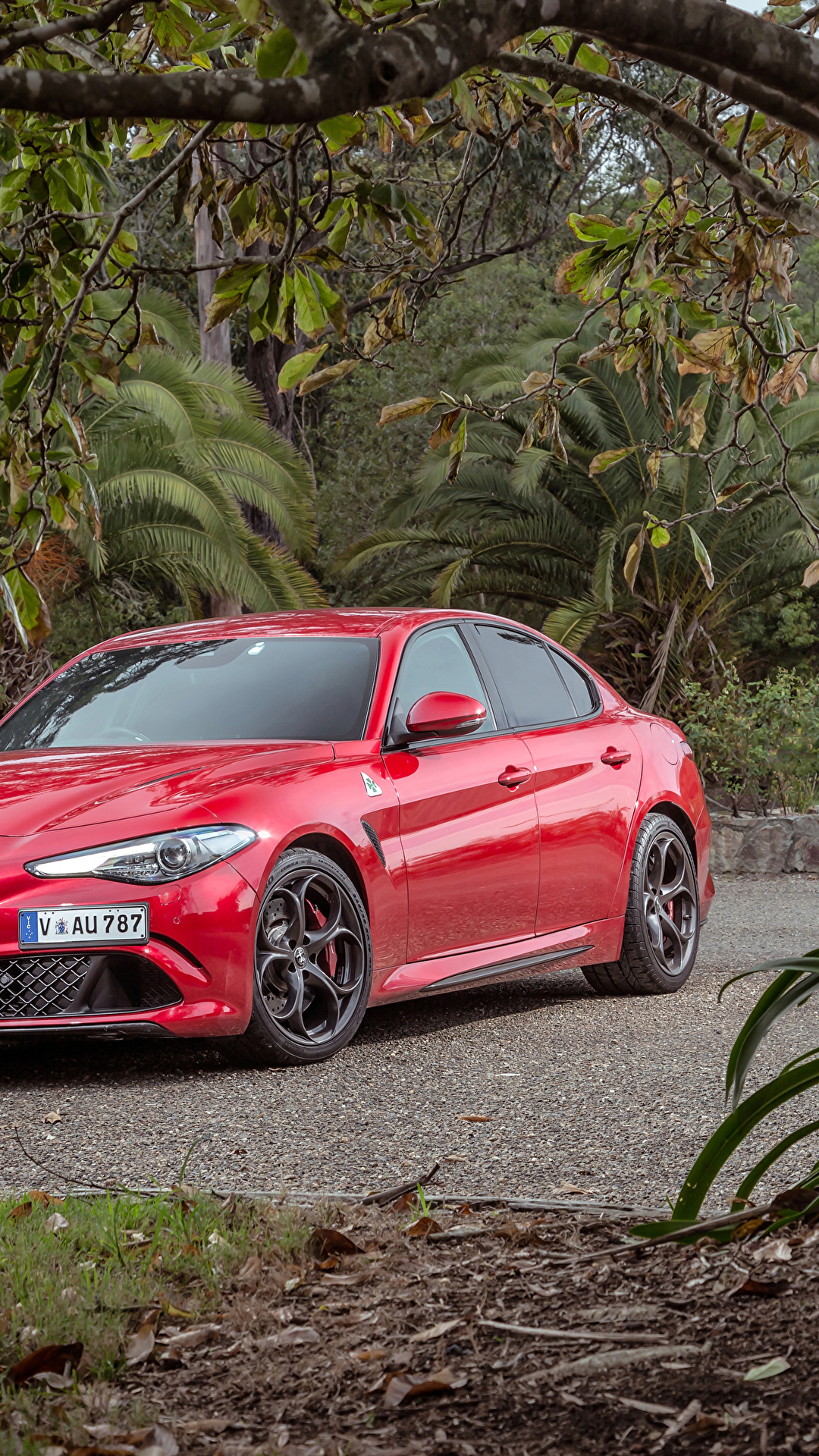 Photo Alfa Romeo 2017 Giulia Quadrifoglio Red Auto 1080x1920