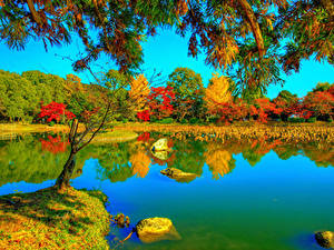 Fotos Japan Kyōto Herbst Parks Flusse HDR Bäume Ast Daikaku-ji