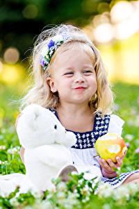 Bilder Teddybär Äpfel Kleine Mädchen Lächeln kind