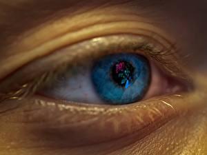 Hintergrundbilder Großansicht Augen
