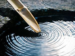 Bilder Großansicht Wasser Bambus Kreise Natur