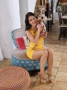 Fotos Hund Melisa Mendiny Brünette Sitzend Lächeln Bein Stöckelschuh Mädchens