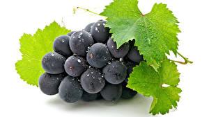 Hintergrundbilder Weintraube Großansicht Weißer hintergrund Blattwerk