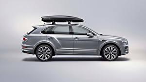 桌面壁纸,,賓利,跨界休旅車,灰色,金屬漆,側視圖,Bentayga V8 Worldwide, 2020,汽车