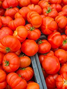 Hintergrundbilder Tomate Viel Rot