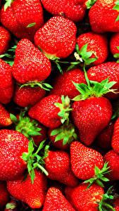 Fotos Textur Beere Erdbeeren Großansicht