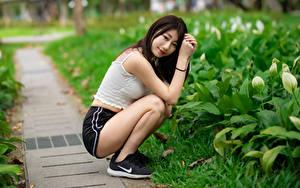 Fotos Asiaten Brünette Sitzt Shorts Unterhemd Lächeln Starren Unscharfer Hintergrund junge frau