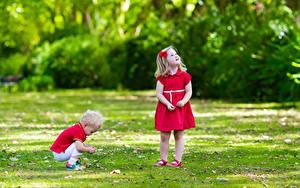 Bilder Kleine Mädchen Junge Zwei Kleid Gras Kinder