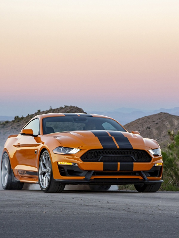 Pictures Ford Mustang Gt S 2019 Orange Auto Stripes 600x800