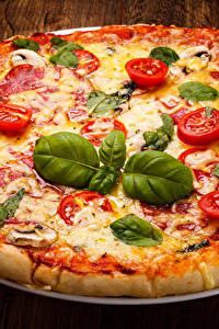 Bilder Fast food Pizza Tomate Bretter Blatt Königskraut