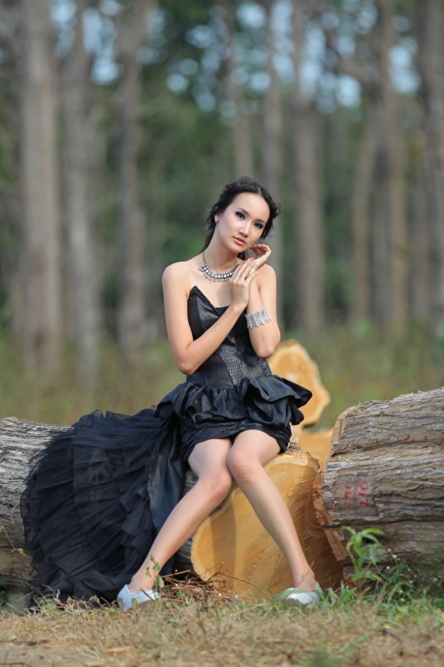 Fotos von Brünette Mädchens Bein Baumstamm Asiatische sitzt Kleid 640x960 junge frau junge Frauen sitzen Sitzend