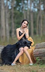 Images Asiatic Trunk tree Brunette girl Frock Sit Legs Girls