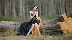 Fonds d'écran Asiatique Le tronc Cheveux noirs Fille Les robes Assise Jambe