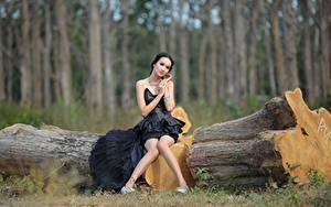 Hintergrundbilder Asiatische Baumstamm Brünette Kleid Sitzt Bein Mädchens