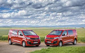 Bilder Opel 2 Rot Metallisch Ein Van 2019-20 Vivaro