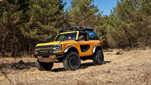 Fotos Ford Sport Utility Vehicle Gelb Bäume Bronco 2, Door Preproduction, 2020 auto