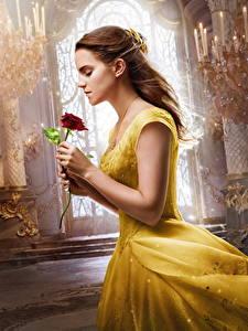 Fotos Emma Watson Rosen Die Schöne und das Biest 2017 Kleid Film Mädchens Prominente