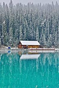 Bilder Gebäude Wald See Kanada Parks Schnee Banff Lake Louise, Alberta Natur